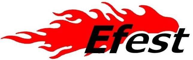 efest logo 1 - Accu 20700 Efest 3000 mAh