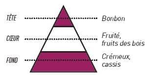 pyramide olfactive sense baies des bois - E-liquide Baies des Bois Sense