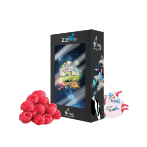 E-liquide Vape Invaders 100ml Bordo2