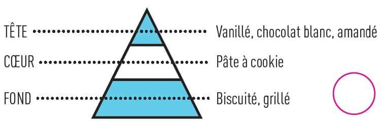 po captain cookie - E-liquide Captain Cookie Insolite Sense
