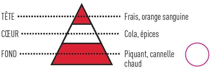 pyramide olfactive colazon - E-liquide Colazon Guine Insolite Sense