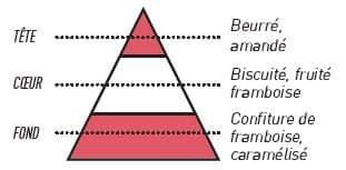 pyramide olfactive gaufrette framboise - E-liquide Gaufrette Framboise Sense