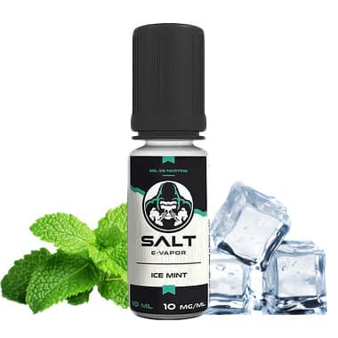 E liquide Ice Mint Salt E-Vapor